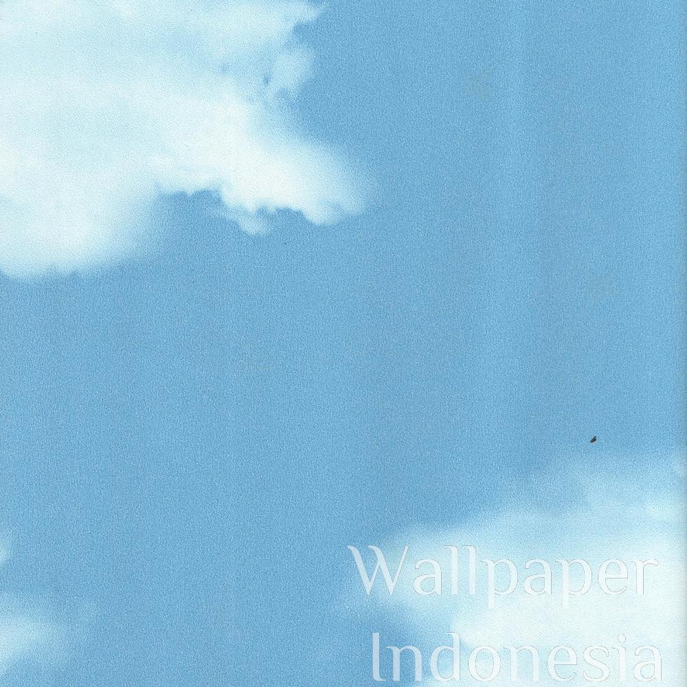 watermark_105-2a-2725.jpg