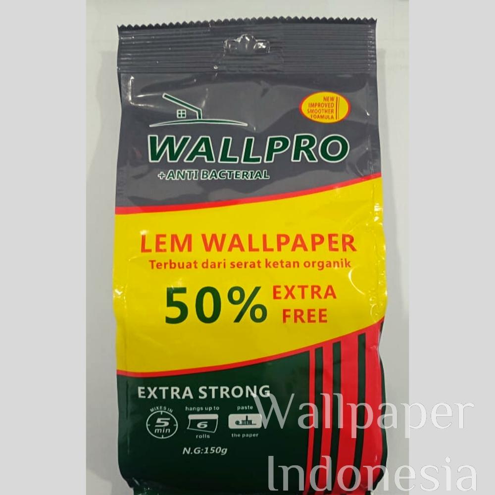 Lem Wall-Pro 150 gram