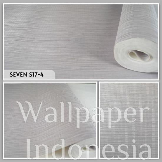 Seven S17-4